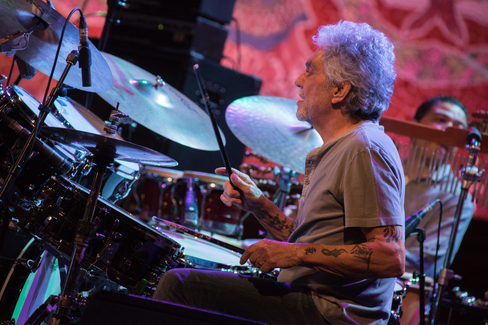 Chick Corea - Steve Gadd Band
